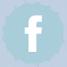 ביומבו - אייקון של פייסבוק